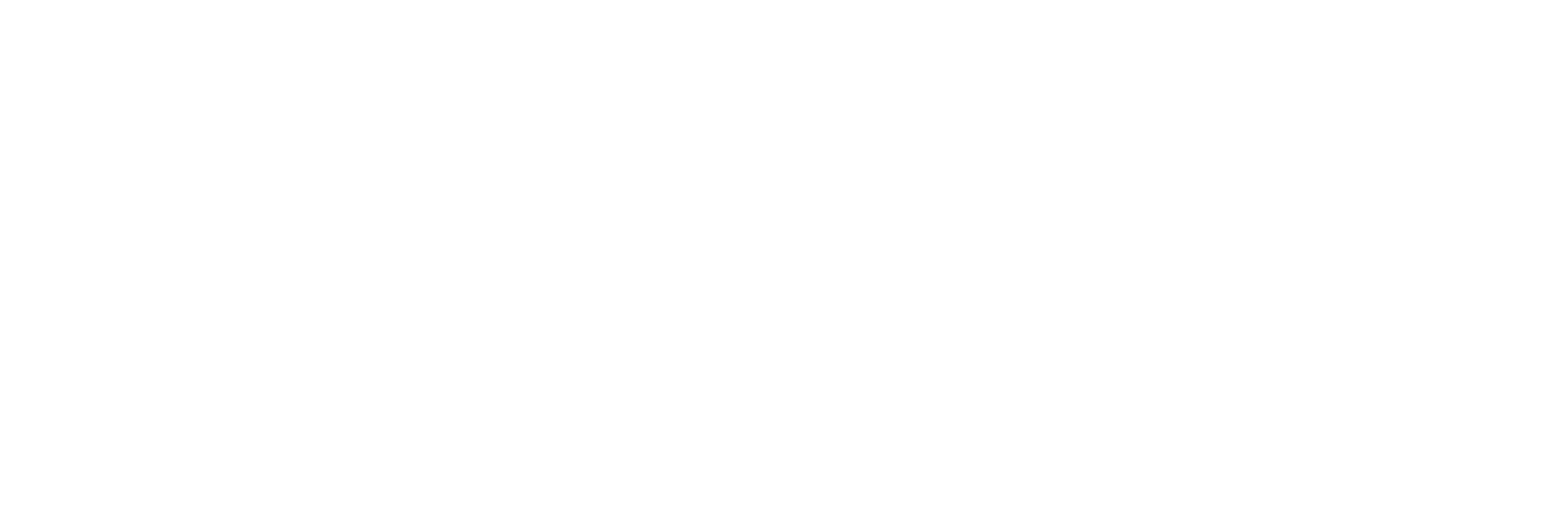 RaderCo_logo_white